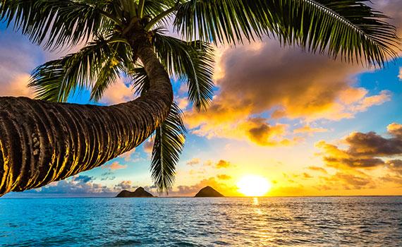 croisiere-hawai